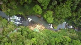 La haute jungle vierge et la rivière de vue aérienne se gorgent banque de vidéos