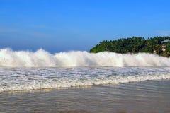 La haute tempête ondule sur le rivage d'océan Palmiers sur un fond Image libre de droits
