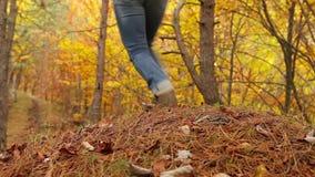 La hembra activa joven con la mochila tiene un paseo en bosque del otoño almacen de video