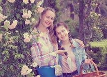 La hembra con el pelo rizado largo y la muchacha que coloca rosas cercanas florecen Imagen de archivo