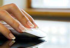 La hembra en la oficina está sosteniendo un ratón del ordenador Fotos de archivo