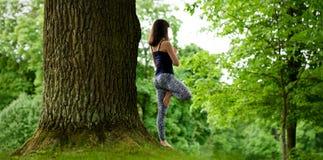 La hembra joven atractiva está practicando yoga y está haciendo el asana Vrikshasana por la mañana Foto de archivo