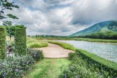 La hermosa vista de un pequeño lago afiló por los árboles verdes en el cl del otoño Foto de archivo libre de regalías