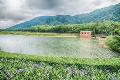 La hermosa vista de un pequeño lago afiló por los árboles verdes en el cl del otoño Imagen de archivo libre de regalías