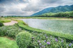 La hermosa vista de un pequeño lago afiló por los árboles verdes en el cl del otoño Imagenes de archivo