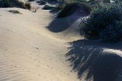 La-het zand van het mMatastrand met slepen Bruin en grijs zand Gegolft zand Stock Foto