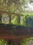La hiedra cubrió el balcón imagen de archivo