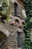 La hiedra cubrió la pared del castillo en Alemania Fotos de archivo libres de regalías