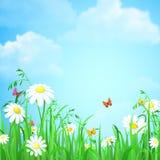 La hierba con la flor y las mariposas vector el fondo plano stock de ilustración