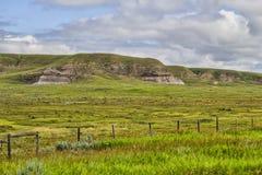 La hierba cubrió las colinas Fotografía de archivo