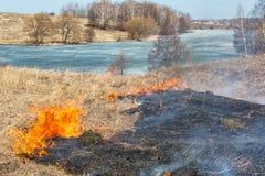 La hierba del año pasado seco ardiente cerca de la madera Fotos de archivo