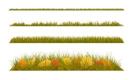 La hierba del otoño con caída se va en el fondo blanco Sistema de decoraciones del otoño stock de ilustración