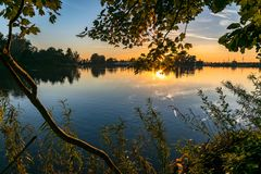 La hierba, el follaje y el tronco de un árbol en el lado de un lago son iluminados maravillosamente por el sol poniente imagen de archivo libre de regalías