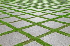 La hierba entre el granito empiedra camino en jardín Imagen de archivo