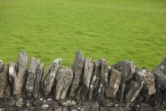 La hierba es siempre más verde Fotografía de archivo libre de regalías