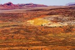 La hierba pintada del amarillo del desierto aterriza la piel ardiente roja de la piedra arenisca anaranjada Foto de archivo libre de regalías