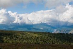 La hierba verde de las montañas del verano y el cielo azul ajardinan Imágenes de archivo libres de regalías
