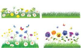 La hierba verde y las flores. Fotografía de archivo