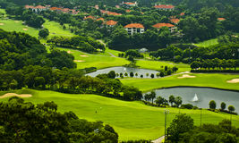 La hierba verde y los árboles en un campo de golf Foto de archivo libre de regalías