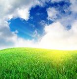 La hierba y el corazón firman adentro el cielo Foto de archivo