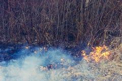 La hierba y el humo fungicidas que se separa a través de la tierra son muy peligrosos a la salud humana fotos de archivo libres de regalías