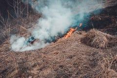 La hierba y el humo fungicidas que se separa a través de la tierra son muy peligrosos a la salud humana imagenes de archivo