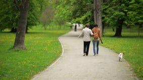 La hija adulta atractiva con su madre hermosa está caminando así como pequeño perro en el parque en primavera almacen de video