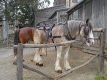 La historia de la colina soberana de Ballarat fotos de archivo