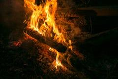 La hoguera en la madera, las luces rojas y la quemadura alojan imagen de archivo libre de regalías