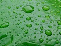 La hoja de Lotus con agua cae verde del efecto Fotos de archivo