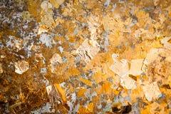 La hoja de oro Para el fondo y las texturas imágenes de archivo libres de regalías