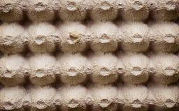 La hoja de superficie de la visi?n superior del caj?n vac?o del huevo de la cartulina o los huevos encuadierna la caja hecha del  imágenes de archivo libres de regalías