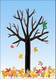 La hoja pasada Imagen de archivo libre de regalías