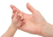 La holding del bambino genera la mano Fotografia Stock Libera da Diritti