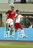 La Hongrie contre le 0:1 du Portugal, qualificatif de coupe du monde de la FIFA Photo libre de droits