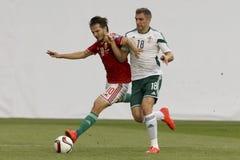 La Hongrie contre les Hollandes Le football 2016 de qualificateur d'euro de l'UEFA de l'Irlande du Nord m Photographie stock