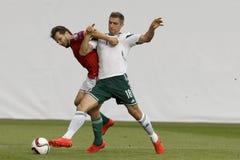 La Hongrie contre les Hollandes Le football 2016 de qualificateur d'euro de l'UEFA de l'Irlande du Nord m Photos stock