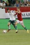 La Hongrie contre les Hollandes Le football 2016 de qualificateur d'euro de l'UEFA de l'Irlande du Nord m Photos libres de droits