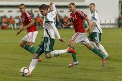 La Hongrie contre les Hollandes Le football 2016 de qualificateur d'euro de l'UEFA de l'Irlande du Nord m Photographie stock libre de droits