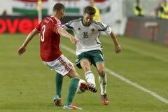 La Hongrie contre les Hollandes Le football 2016 de qualificateur d'euro de l'UEFA de l'Irlande du Nord m Photo libre de droits