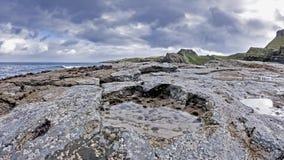 La huella rara del dinosaurio del tracksite sauropod-dominado del nam Brathairean, hermanos de Rubha señala - la isla de Skye almacen de metraje de vídeo