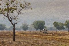 La hutte Photos libres de droits