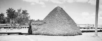 La hutte de l'indigène Photos stock