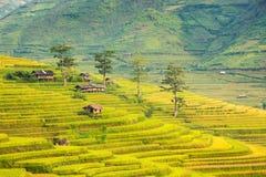 La hutte et la nature de montagne dans la terrasse de riz du Vietnam aménagent en parc Images libres de droits