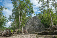 La Iglesia or The Church Pyramid, Coba, Quintana Roo, Mexico Royalty Free Stock Photos