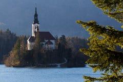 La iglesia del lago assumption sangró Eslovenia Imágenes de archivo libres de regalías