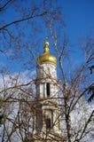 La iglesia doró la bóveda Fotos de archivo