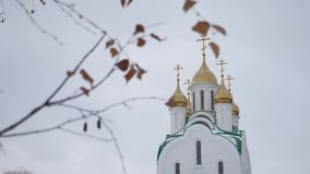 La iglesia rusa con las bóvedas y las cruces del abedul ramifican en un fondo gris Foto de archivo