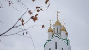 La iglesia rusa con las bóvedas y las cruces del abedul ramifican en un fondo gris Imagen de archivo libre de regalías