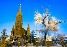 La iglesia y la helada cubrieron el árbol Fotos de archivo libres de regalías